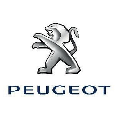 reference wincard tunisie Delice PEUGEOT